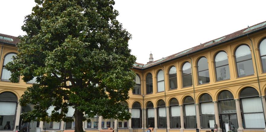 Palazzo-delle-Srelline2